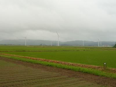 P1000151